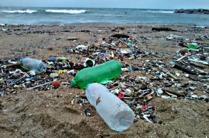 desechos marinos